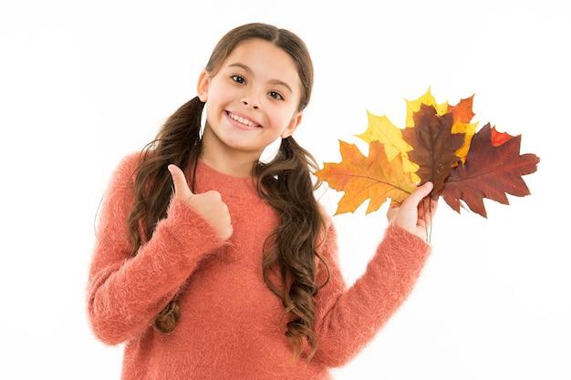 행복한 어린 시절. 흰색 바탕에 작은 아이. 소녀는 자연 잎을 잡고 있습니다. 꽃다발 개념입니다. 식물과 식물학. 가을 할인. 검은 금요일. 자연스럽고 유기농. 건강한 생활. 자연미.