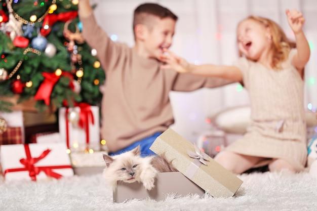Счастливые дети и пушистый кот в коробке в украшенной рождественской комнате