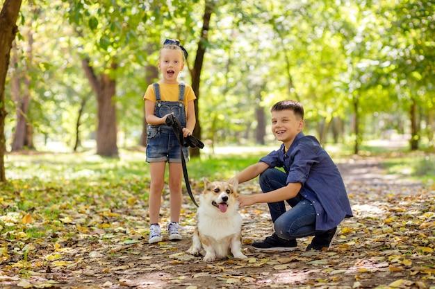 Счастливые дети в парке играют со своей собакой