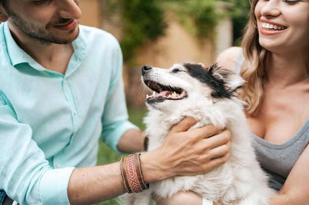 Счастливая пара парней, играющих со своей собакой на заднем дворе на траве. веселая старая собака