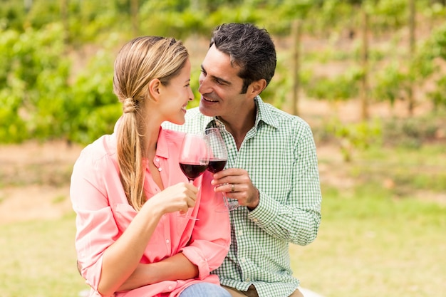 ワインのグラスを乾杯する幸せなカップル