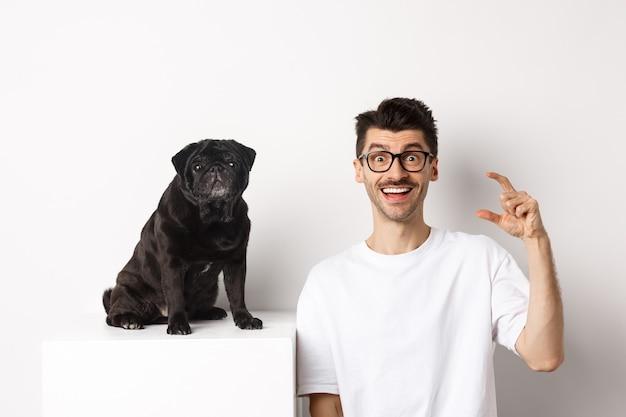 Счастливый владелец собаки сидит рядом с милым черным мопсом, улыбается и показывает маленький маленький размер, белый фон.