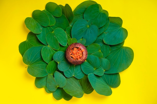 Happy dussehra greeting card , green apta leaf and rice, indian festival dussehra