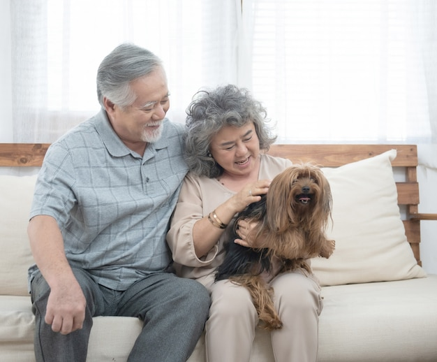 Happy elderly senior asian couple sit on sofa together with pet therapy in nursing daycare,retired man and woman holding dog while sitting on couch in living room at home.