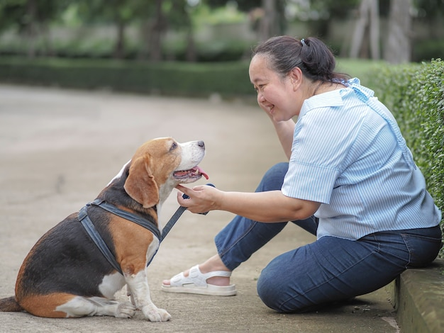 Happy elderly woman chatting with a beagle, relax time concept