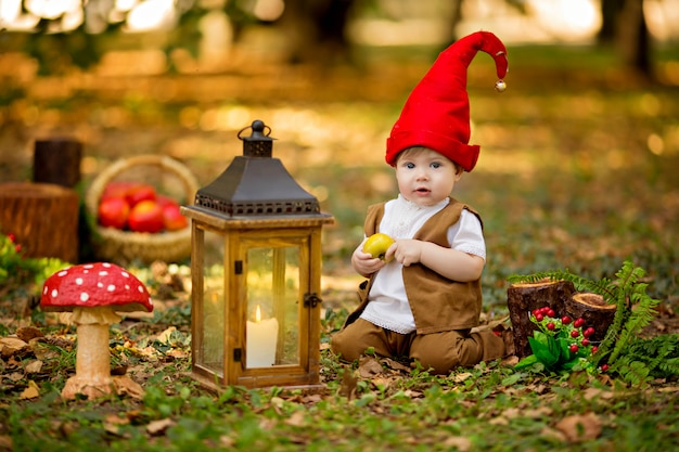Happy fairy forest gnome plays and walks in the forest, collects and eats delicious apples