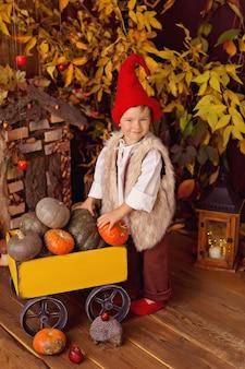 Счастливый сказочный маленький мальчик-гном играет и собирает тыквы, грибы, ест яблоки