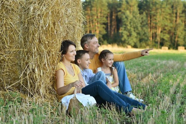 夏のフィールドで幸せな家族、彼の手で指して男