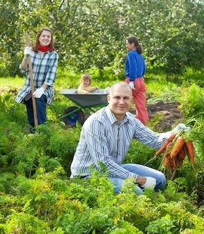 La famiglia felice sta raccogliendo le carote