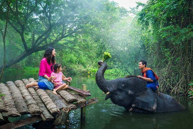 Happy family mahout, thailand