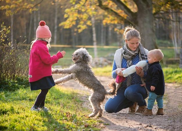 幸せな家族の母と2人の子供の女の子と男の子が屋外で犬と遊ぶ