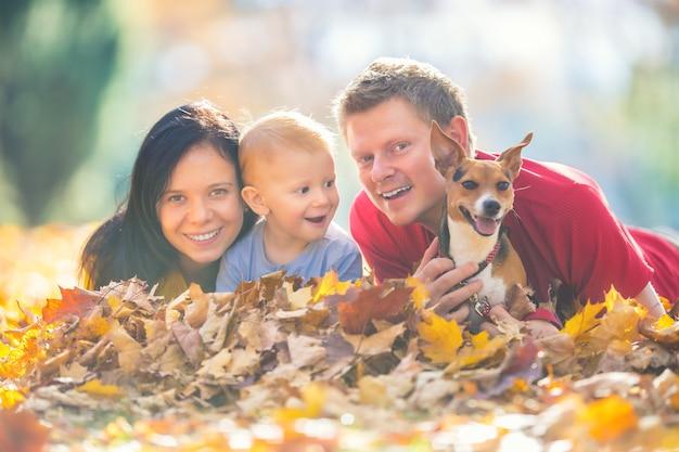 Счастливый мальчик и собака отца матери семьи в осеннем парке, играя с листьями.