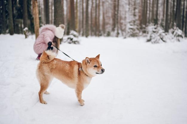 행복한 가족 주말-야외에서 눈 덮인 하얀 추운 겨울 숲에서 빨간색 시바 inu 강아지와 함께 재미 핑크 따뜻한 착실히 보내다 걷기에 귀여운 소녀