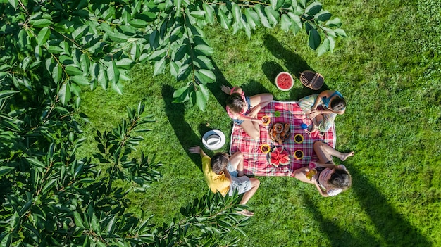 Happy family with children having picnic in park, parents with kids sitting on garden grass and eating healthy meals outdoors, aerial drone view from above, family vacation and weekend