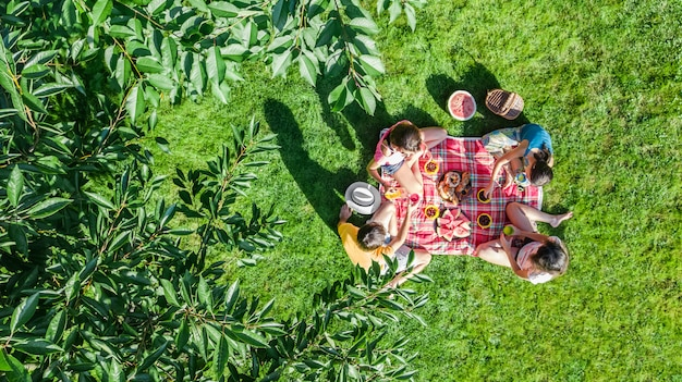 Happy family with children having picnic in park, parents with kids sitting on garden grass and eating healthy meals outdoors, aerial drone view from above