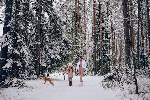 幸せな家族の若い母親とピンクの暖かい服を着た小さなかわいい女の子が雪のように白い寒い冬の森の屋外で赤い柴犬の犬と一緒に楽しんで歩いています
