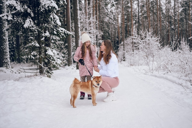 Happy family young mother and little cute girl in pink warm outwear walking having fun with red shiba inu dog in snowy white cold winter forest outdoors. family sport vacation activities.