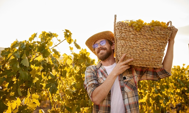 Happy farmer carrying basket with grapes