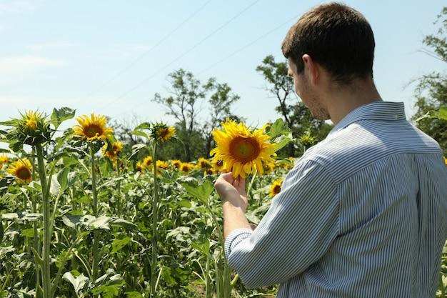 ひまわりを探して幸せな農家
