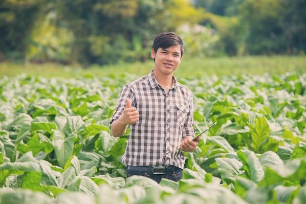 タバコの栽培にデジタルタブレットを使用している幸せな農夫。 Premium写真