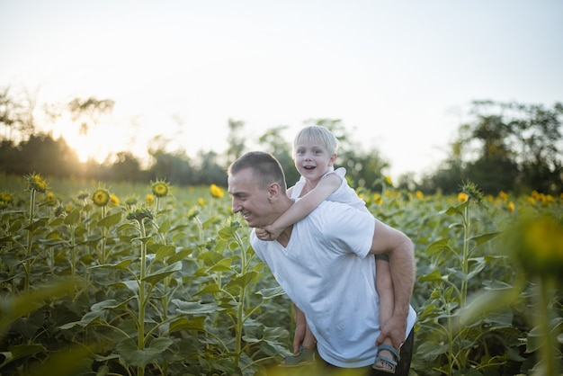 Happy father with smiling son on back walks on blooming sunflowers field