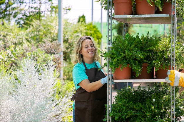 幸せな女性の花屋は、観葉植物の棚を保持し、鉢植えの植物とラックを移動します。ミディアムショット、コピースペース。ガーデニングの仕事の概念