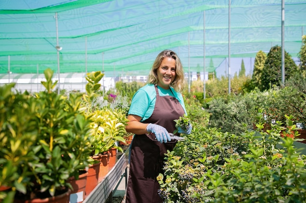 Счастливый женский флорист, стоящий среди рядов с горшечными растениями в теплице, срезая куст, держа ростки,