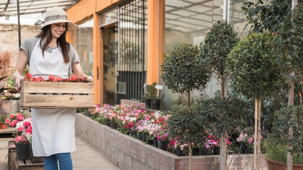 Happy female gardener carrying wooden crate full of red flowers in greenhouse