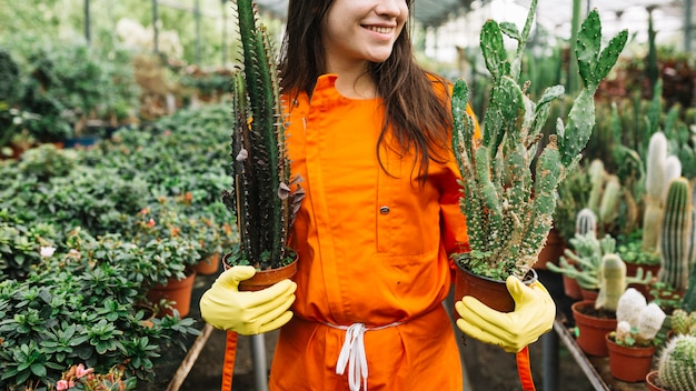 Happy female gardener holding cactus potted plants in greenhouse