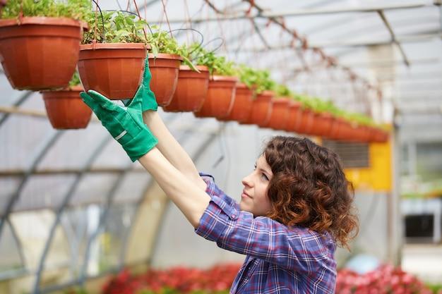 幸せな女性保育園労働者の温室で植物をトリミング