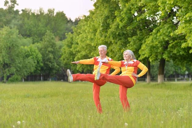 公園で運動する幸せなフィットの年配のカップル