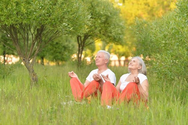 Счастливая пара старших медитирует в парке