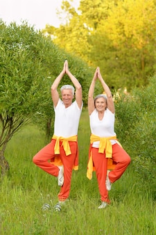 Happy fit senior couple practicing yoga in  park