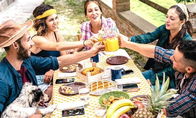 Happy friends toasting healthy fruit juice at countryside picnic