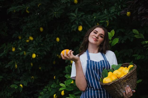 줄무늬 앞치마를 입은 행복한 정원사는 레몬 레모네이드 광고를 수확합니다