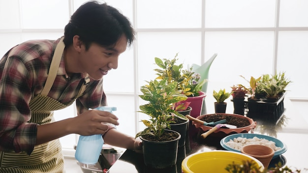 Happy gardener man spraying water to seedling in flowerpot.