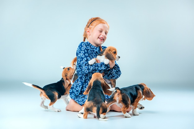 Happy girl and beagle puppies on gray