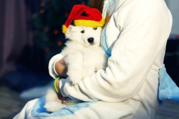 クリスマスの装飾でサモエドハスキー犬とユニコーンの衣装で幸せな女の子
