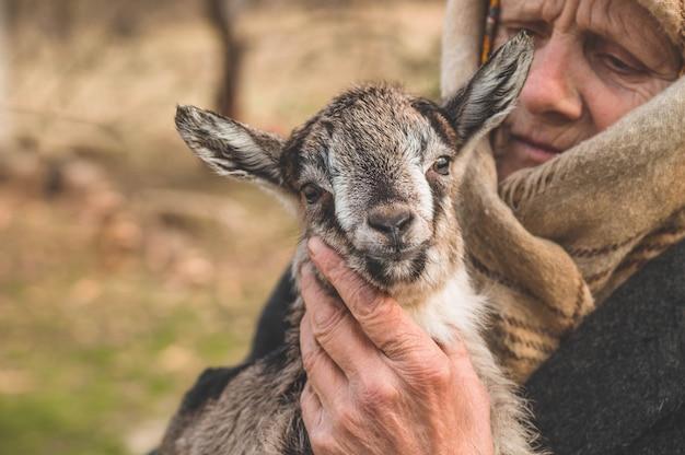 ヤギを両腕に抱えて幸せな祖母