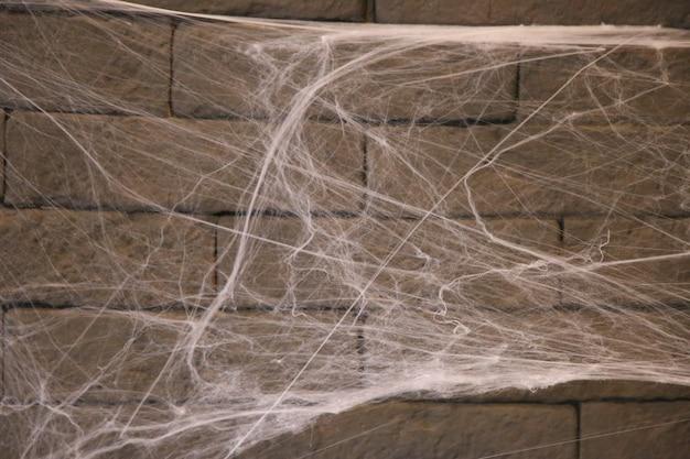 Happy halloween web on the wall