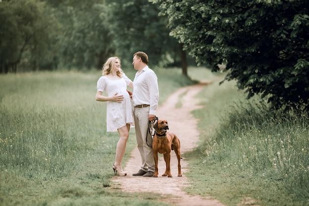 幸せな夫と妻が公園を散歩するために何かについて話している。家族関係の概念