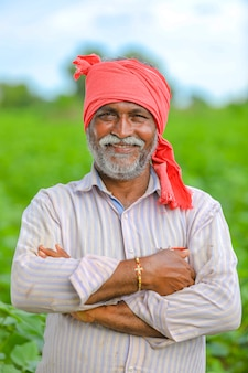 Happy indian farmer at green cotton field