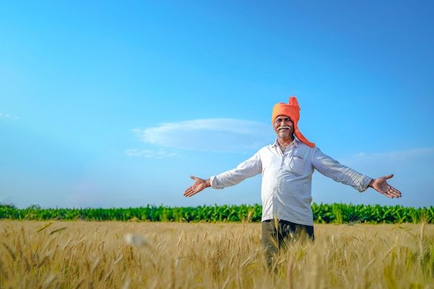 Happy indian farmer walking and spreading his arms in his wheat field.