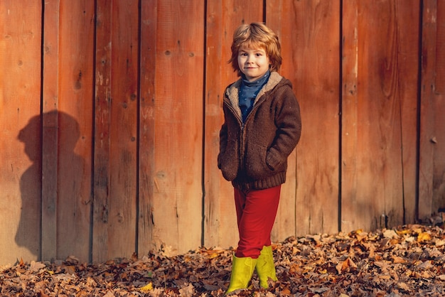 Happy kid having fun in autumn park on warm day on wooden background.