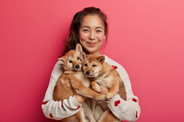 Happy korean female dog owner shows her family members, stands with two adorable pedigree puppies, bought hunting shiba inu dogs, spend time at home.