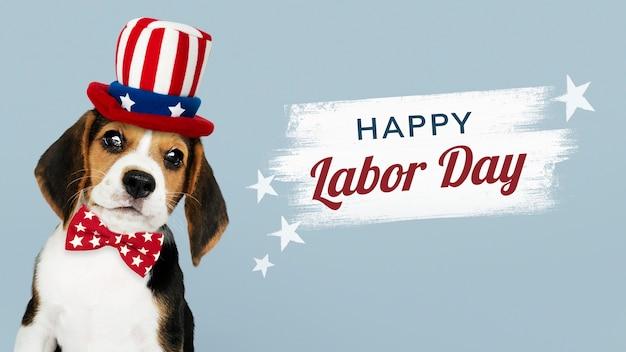 アンクルサムの帽子をかぶったかわいいビーグル犬からの幸せな労働者の日