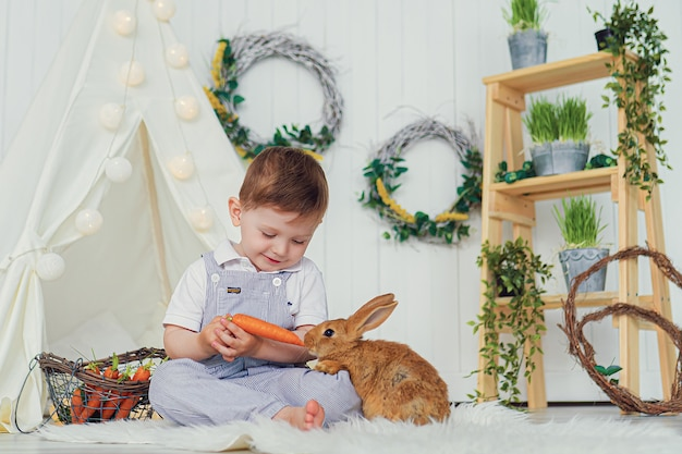 Happy laughing little boy playing with a baby rabbit