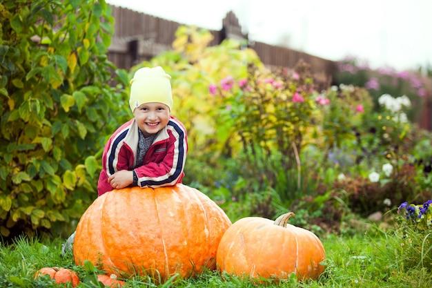 Happy little boy sitting near the pumpkins