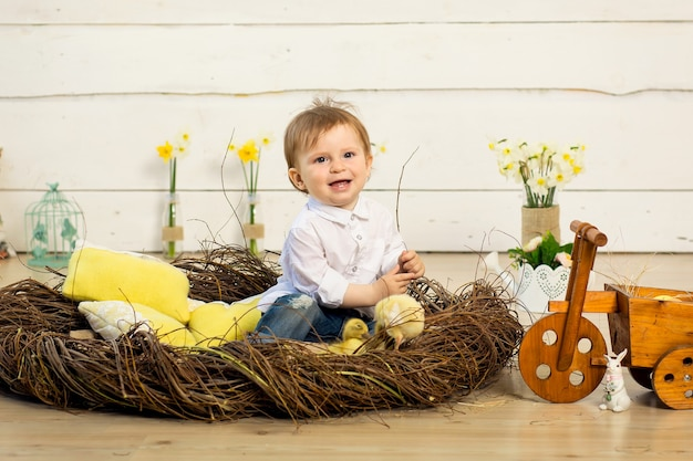Happy little boy sitting in the nest with cute fluffy easter ducklings.
