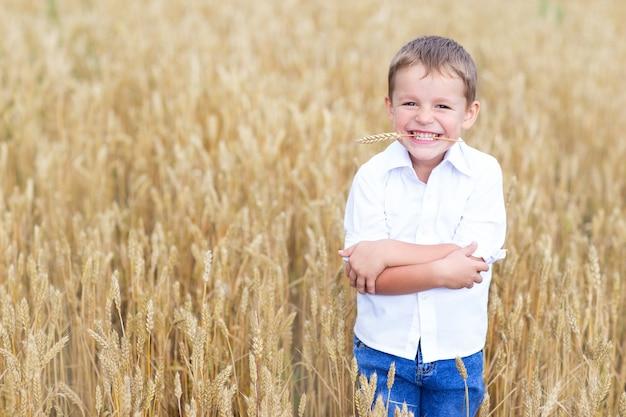 Happy little boy in a wheat field